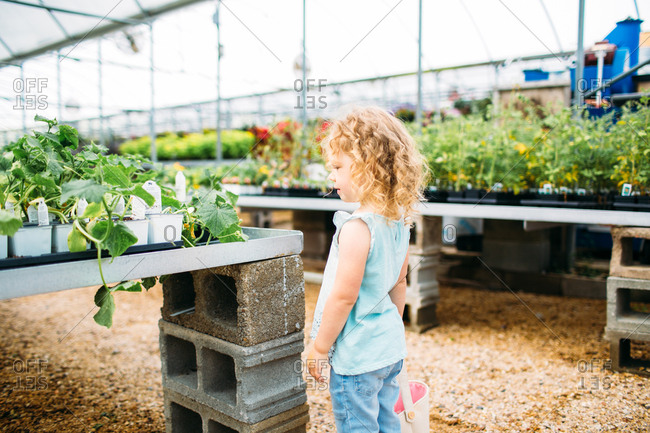Little girl looking at plants in a greenhouse