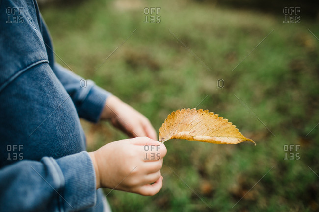 Little girl holding a fallen leaf in her hand