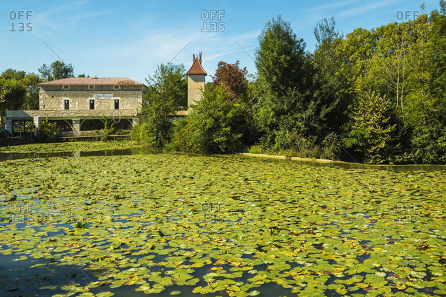 Eymet, Bergerac, Dordogne, France - August 20, 2015: Lily pads on Le Dropt River at this popular south western historic bastide town