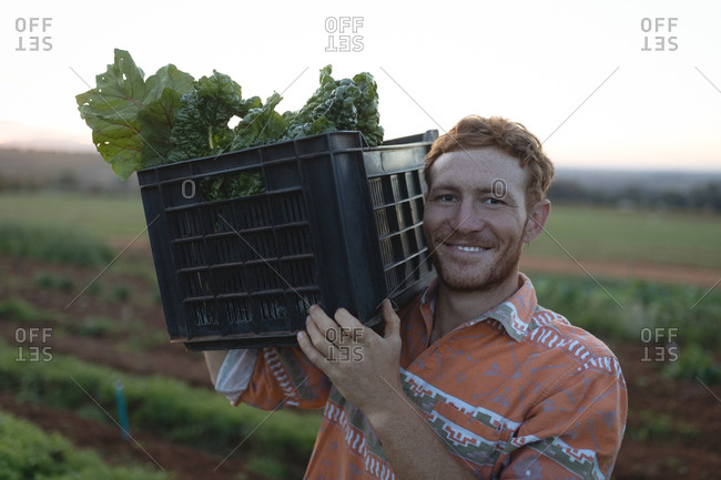 Portrait of farmer holding crate full of vegetable in the field