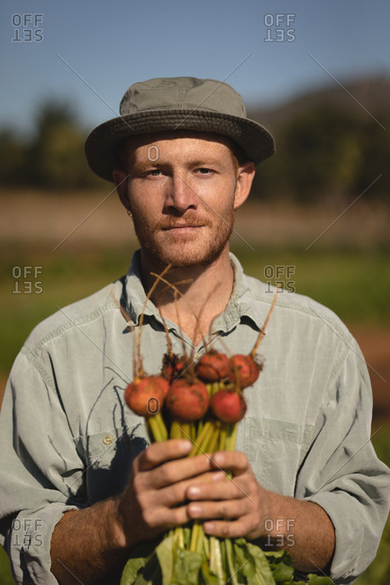 Portrait of confident farmer holding harvested turnip on a sunny day