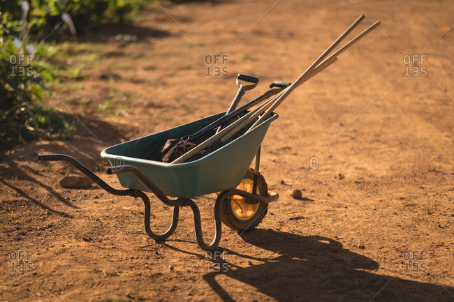 Work tools in wheelbarrow on a sunny day