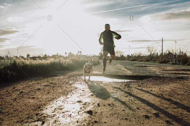 Sporty man running with his dog at sunset