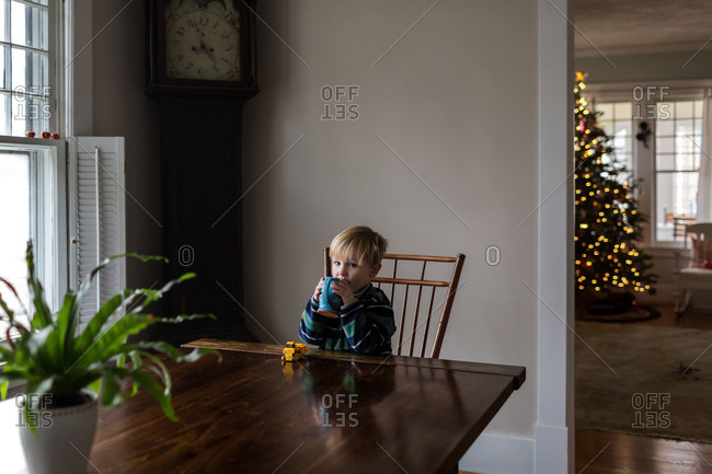 Boy drinks cocoa at table during Christmas