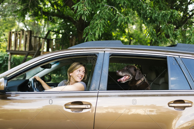 Woman and Labrador Retriever sitting in car