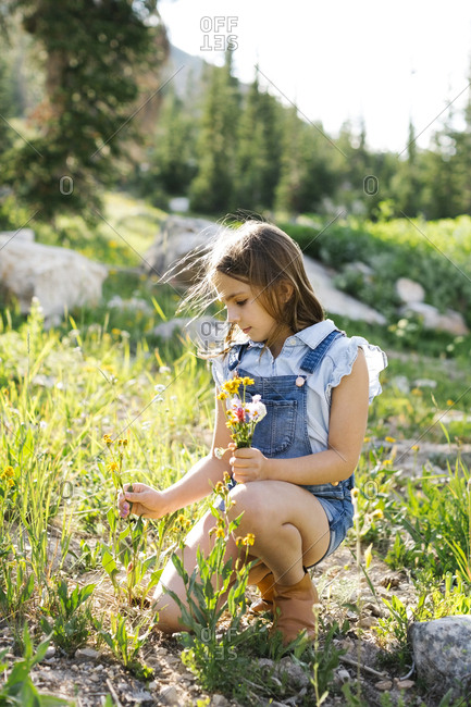 Girl (8-9) picking wildflowers in meadow