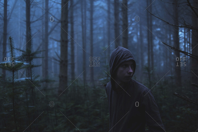 Man in hoody in spooky misty pine forest