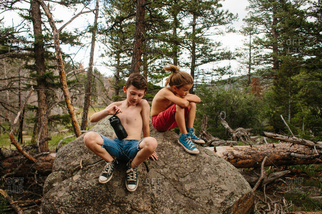 Brothers sitting on rock in a forest