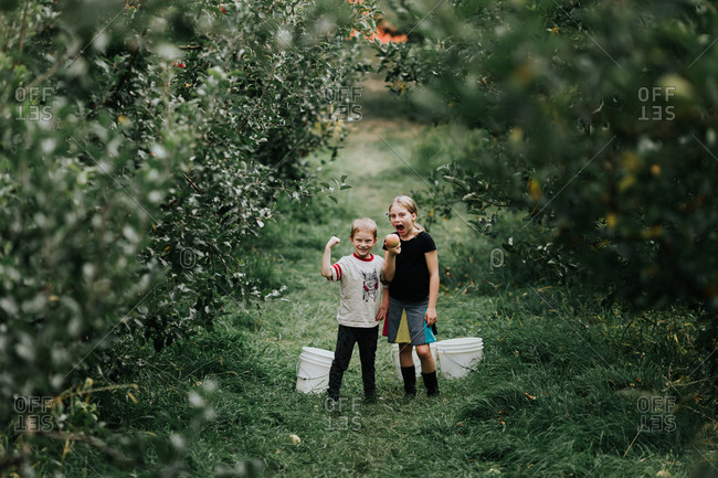 Children apple picking in an orchard