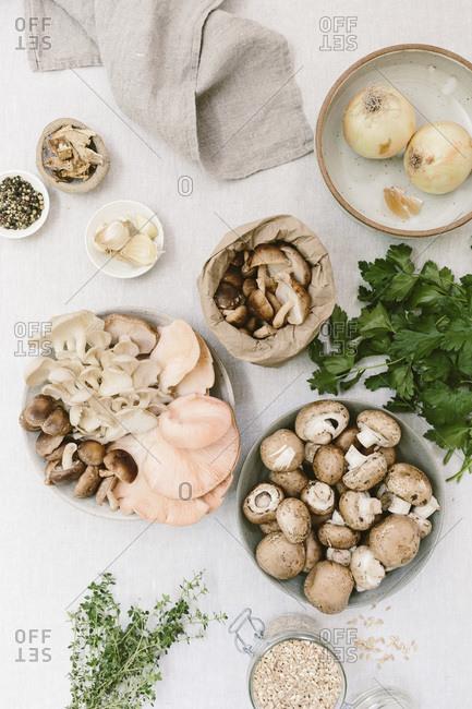 Ingredients for Mushroom Ragout