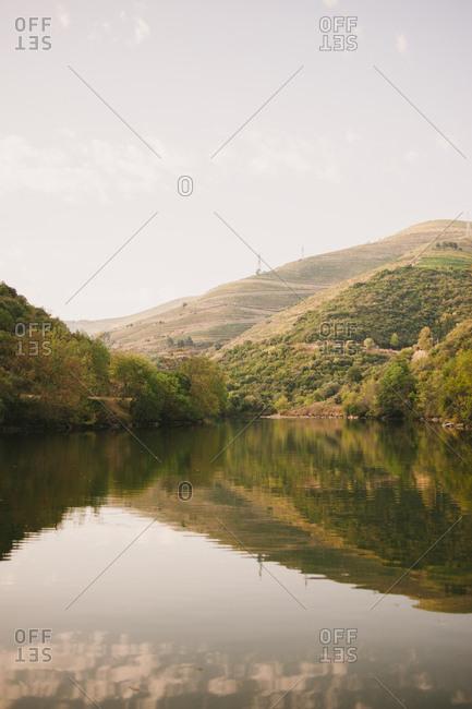 Hillside along the Douro River in Mesao Frio, Portugal