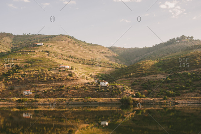 Vineyards on a hillside along the Douro River in Mesao Frio, Portugal