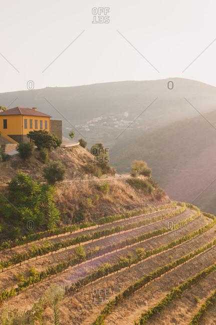 Wine estate in Mesao Frio, Portugal