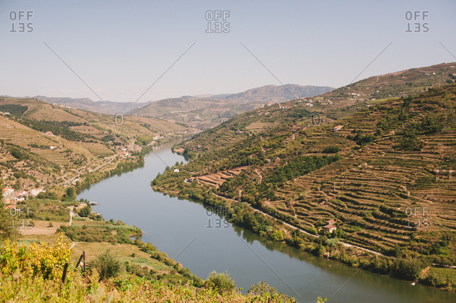 Vineyards on hills along the Douro River in Mesao Frio, Portugal