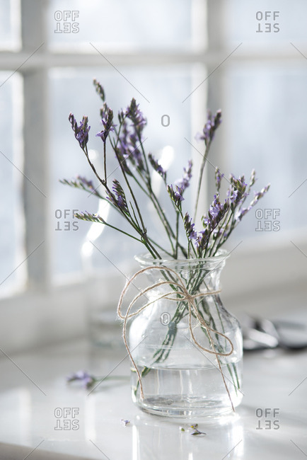 Purple flowers in a vase on a window sill