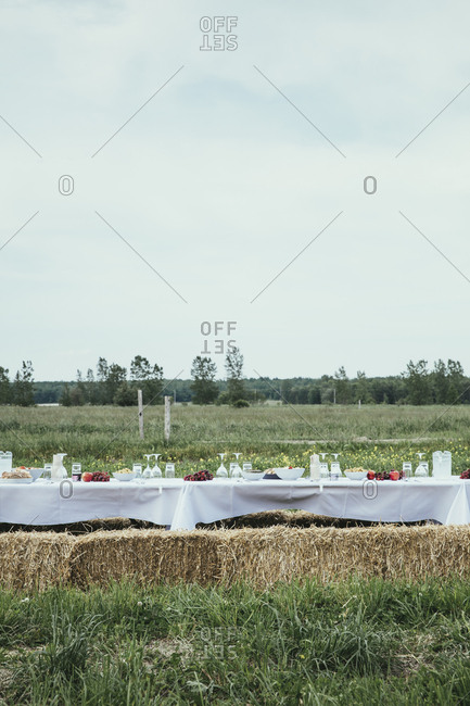 Dinner table in the field
