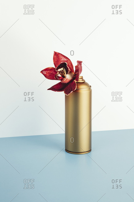 Orchid spray can
