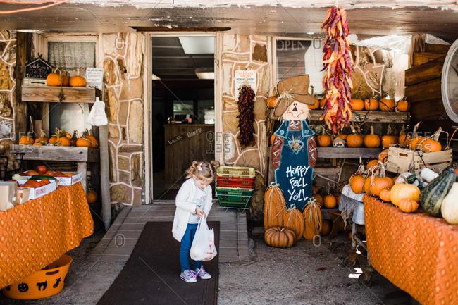 Girl among pumpkins for sale