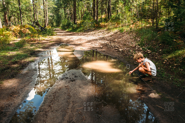 Boy exploring mud puddle on dirt path in the forest