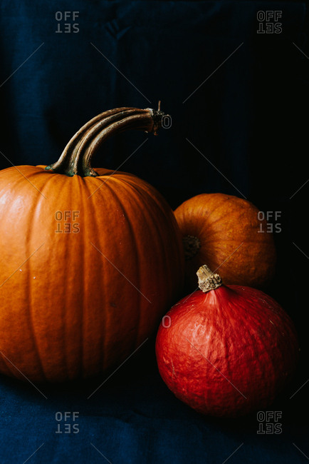Three Halloween pumpkins on dark blue background