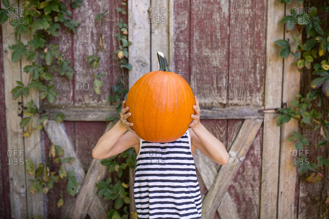 Playful girl holding pumpkin against face while standing against wooden wall at yard