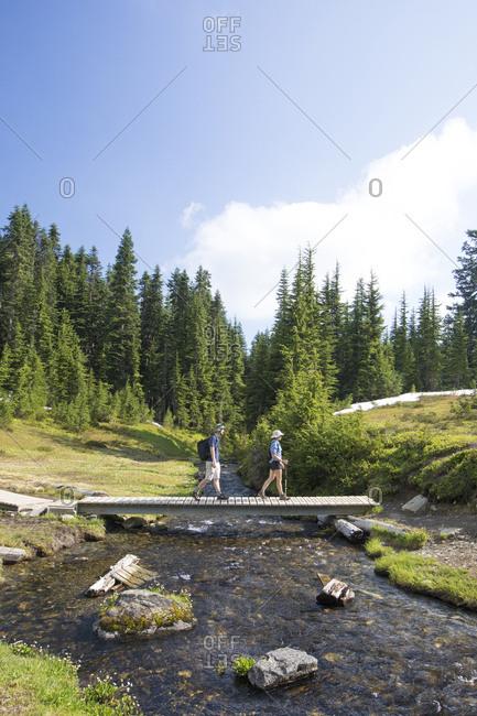 Side view of hikers walking on footbridge over stream against sky