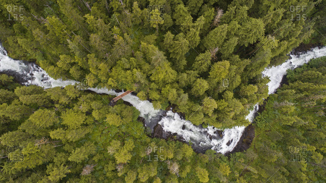 High angle view of river flowing amidst forest