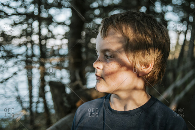 Sunlight falling on thoughtful boy against trees