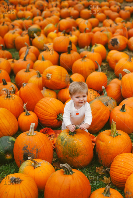 Baby in a field filled with pumpkins