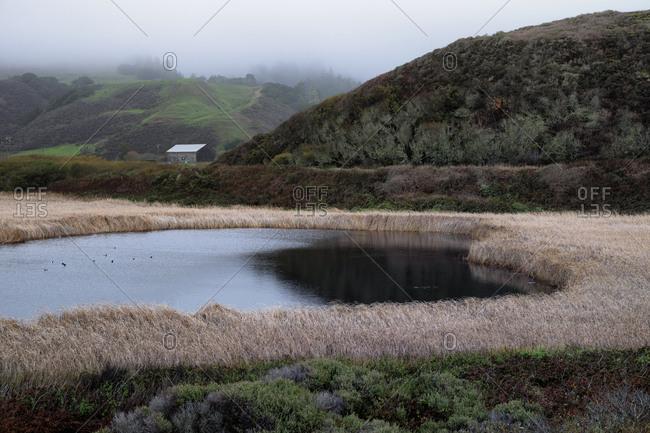 Scenic view of pond in marsh landscape, Santa Cruz County , California, USA.