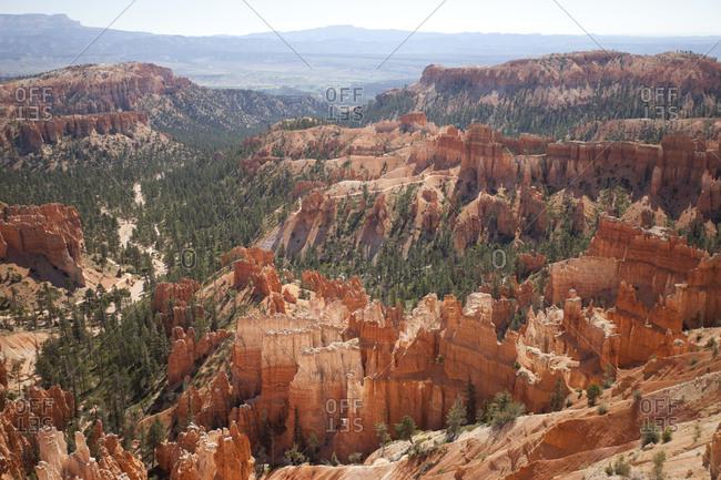 Bryce Canyon Landscape