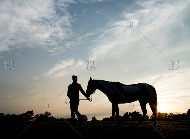 Silhouette of person leading a horse through pasture