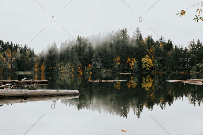 Landscape of autumn trees reflecting on a lake