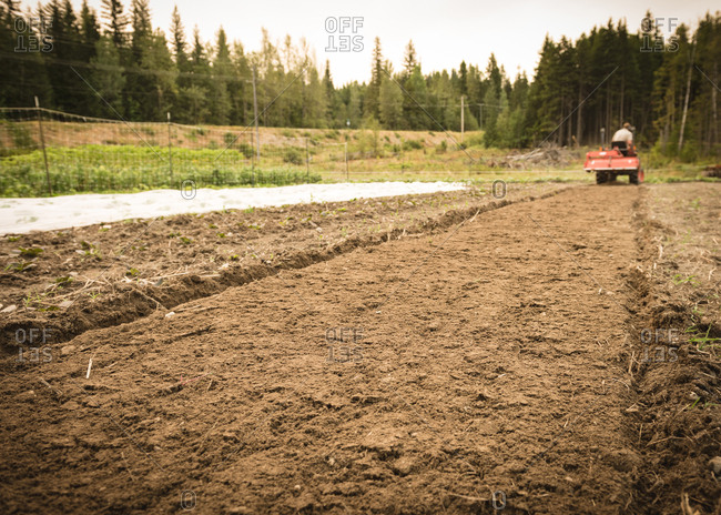 Man driving a small tractor ploughing field in farm