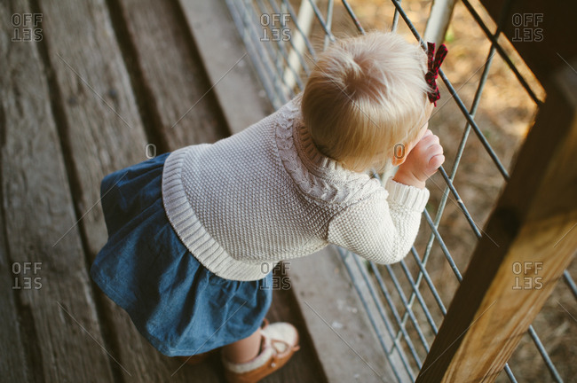 Young girl peering through a wire farm fence