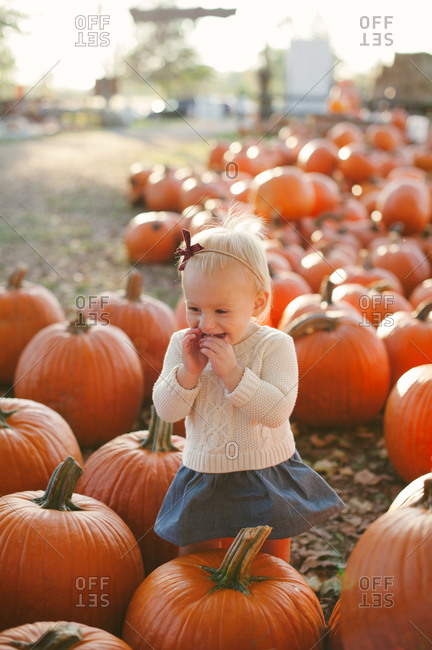 Smiling little girl in a pumpkin patch