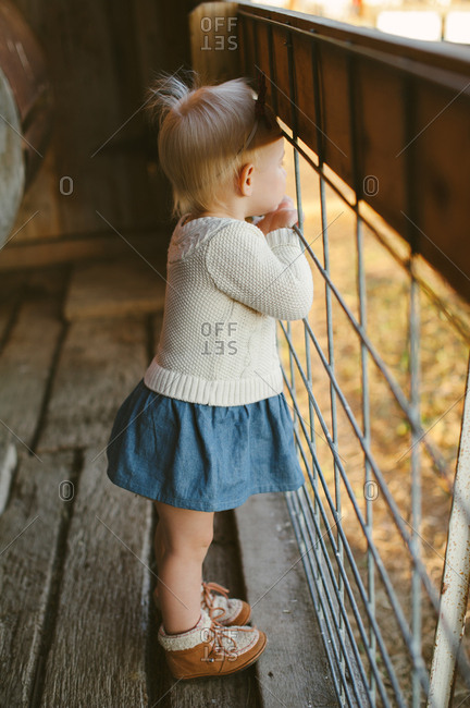 Little girl looking through a wire farm fence