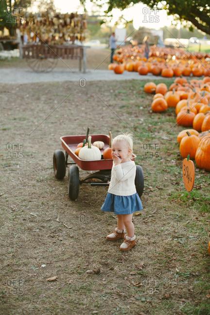 Little girl pulling a wagon of pumpkins