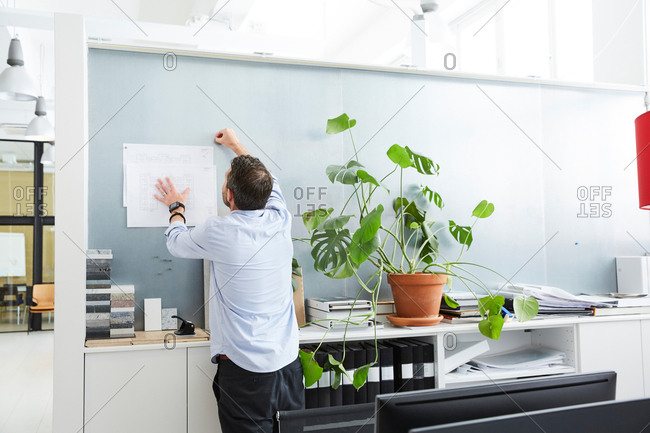 Rear view of male architect working in creative office
