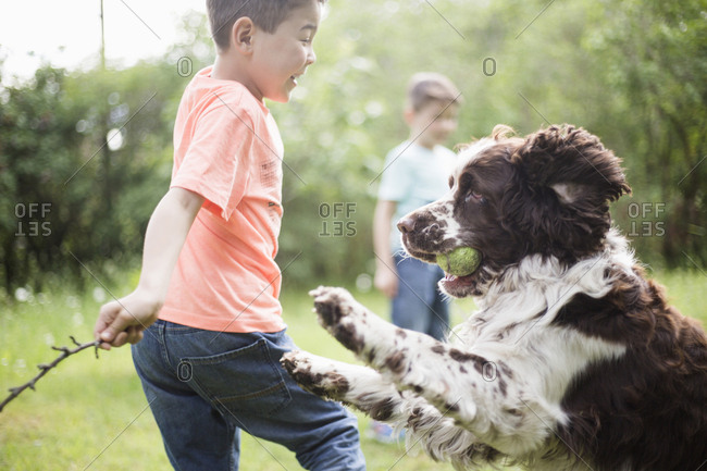 Boy and dog playing with brother standing in back yard