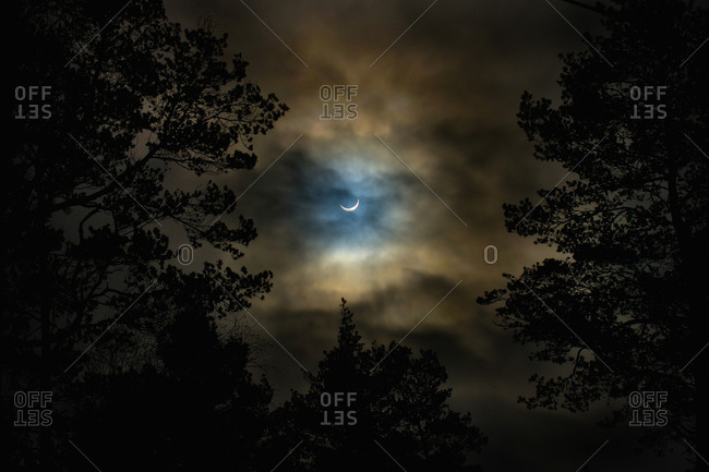 Low angle view of moon in cloudy sky over silhouette trees
