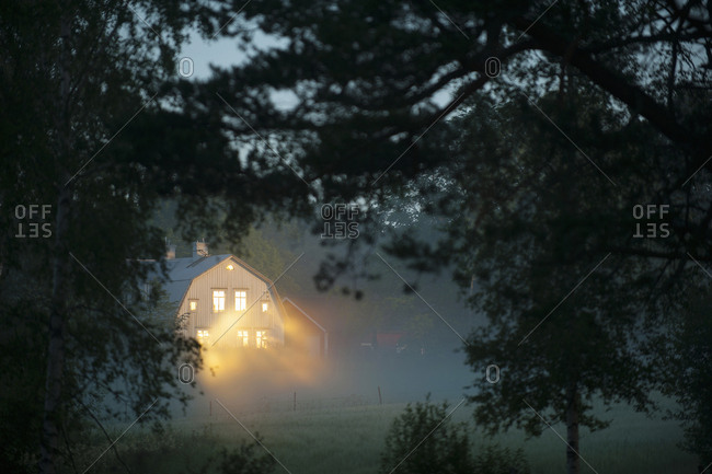 Illuminated house seen through branches in forest during foggy weather