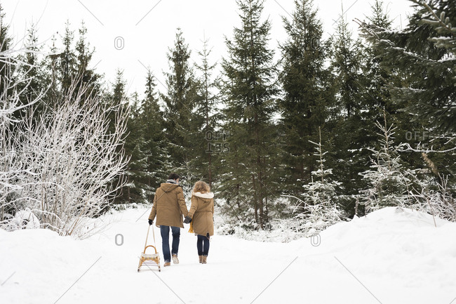 Back view of young couple in love with sledge in winter forest