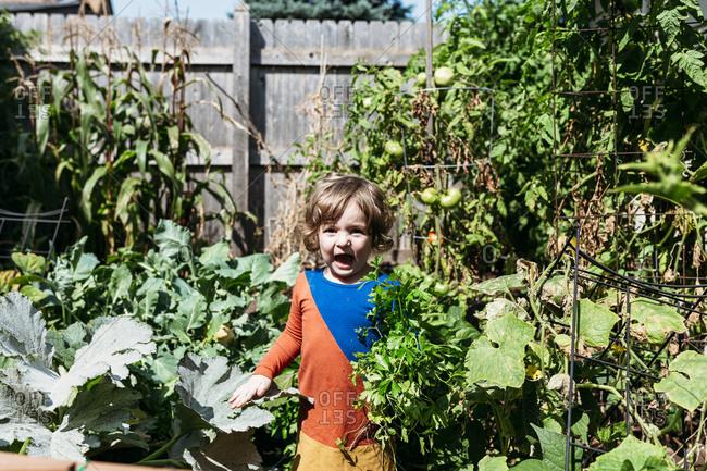 Child in a vegetable garden
