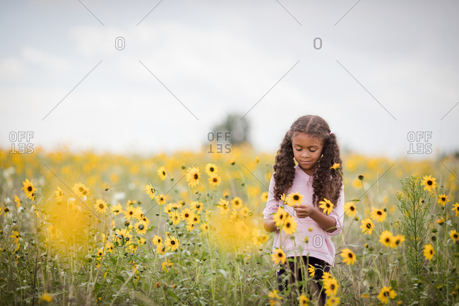 Girl picks wildflowers