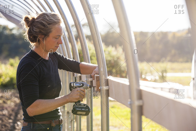 October 10, 2015: A farmer uses a cordless drill to assemble a hoophouse on a sunny day.