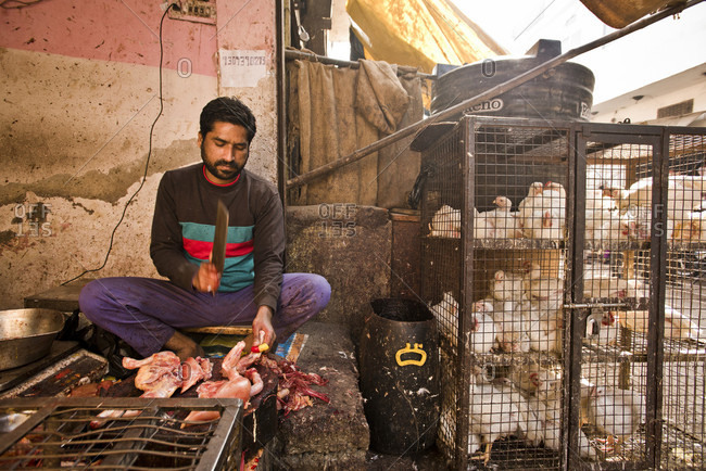 December 28, 2016: A young butcher chopping up chickens on the streets of Jaipur, India.