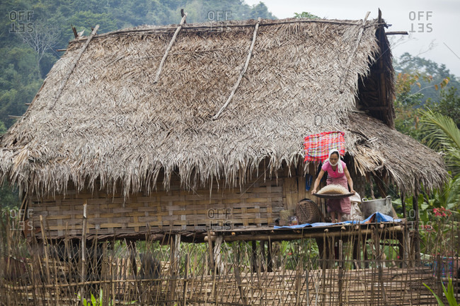 January 17, 2014: A woman separates rice from the hulls (husks) by shaking them in a flat basket on her front porch in Muang Hat Hin, Laos.