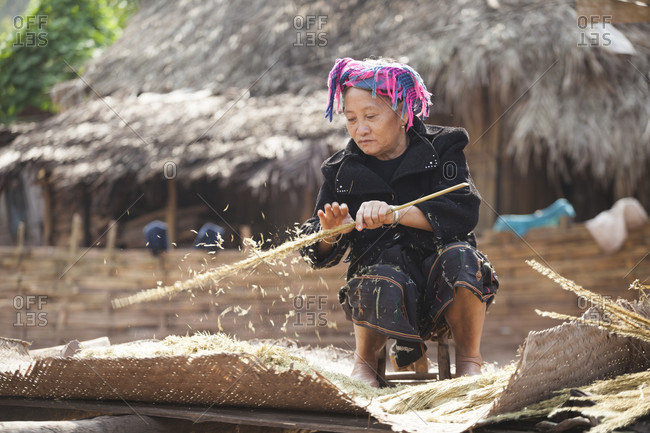 January 18, 2014: A woman shakes the seed husks off dried grass stalks for use as a stuffing for mattresses in Muang Hat Hin, Laos.