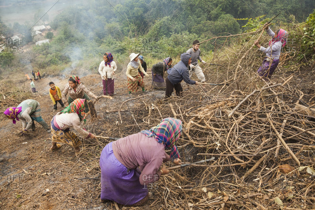 January 20, 2014: Woman (and Robert Hahn) clear the hillside above Muang Va, Laos to make space for a temporary relocation site for their homes. The town will be completely inundated by Nam Ou River Dam #6 and the government provided resettlement near Hat Sa will not be completed in time.